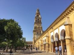 La Mezquita à Cordoue / Mezquita in Cordoba.