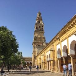 Córdoba - La Mezquita