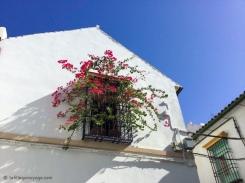 Les couleurs de l'Andalousie. / Andalusia's colors.