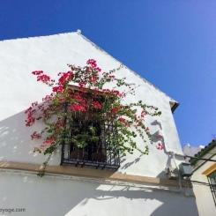 Grenade - Les couleurs de l'Andalousie. / Andalusia's colors.