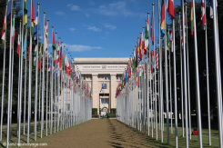 ONU (Organisation des Nations Unies)