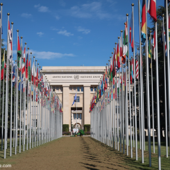 ONU (Organisation des Nations Unies)