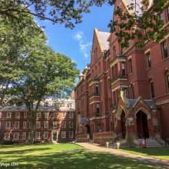 Université Harvard