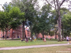Campus de l'université Harvard